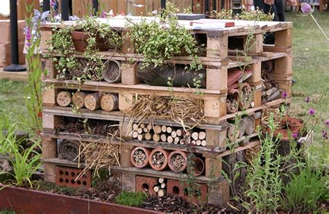 building a mansion build a bug mansion wild about gardens