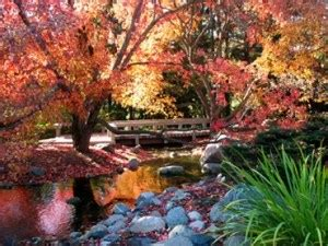 best botanical gardens in minnesota 171 wcco cbs minnesota