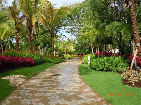 garden walkways garden walkways picture of dorado a ritz carlton