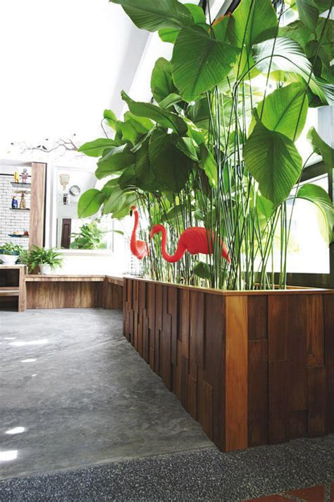 indoor plants singapore 9 beautiful homes that decorate with plants home decor