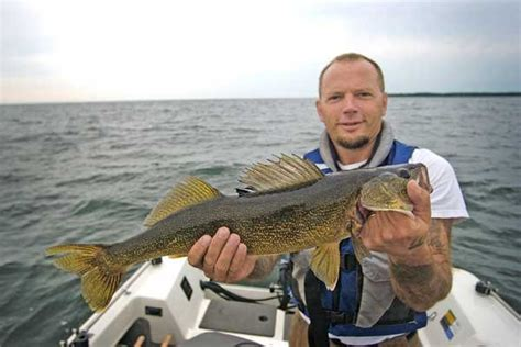 boat loan rates in michigan walleye now the top of the food chain boatus magazine
