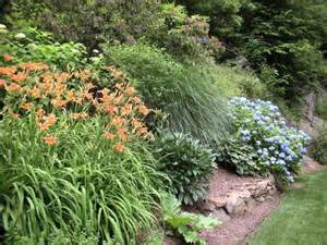 ground cover plants for slopes shade how to attractively