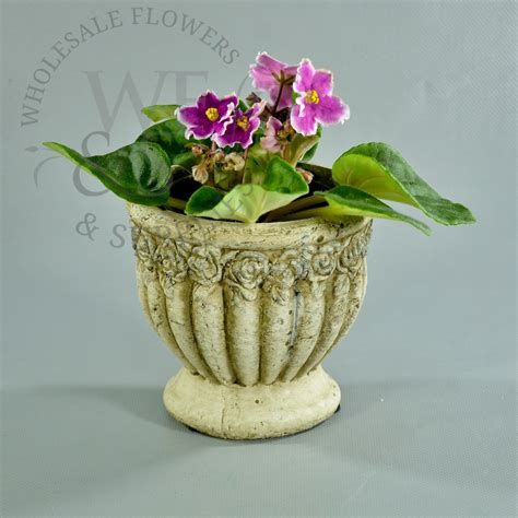 small flower pot distressed clay flower pot small wholesale flowers and