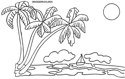 coloring book pages palm tree palm tree coloring pages coloring pages to download and