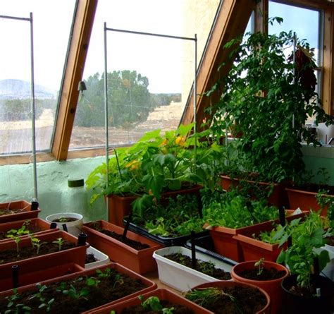 home  fresh    indoor garden ideas