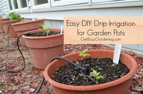 diy drip irrigation  water  plants frugally