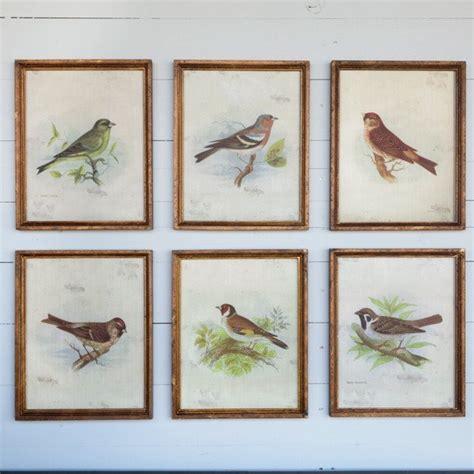 set of 6 vintage hummingbird art prints antique bird art wall hanging home decor ebay framed vintage bird prints set of 6 antique farmhouse