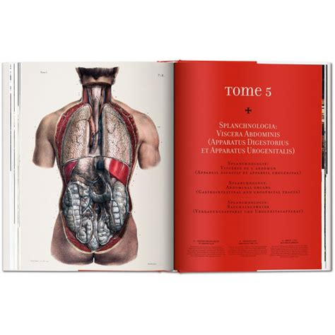 bourgery atlas of human anatomy and surgery taschenboekhandel bourgery atlas of human anatomy and surgery iep