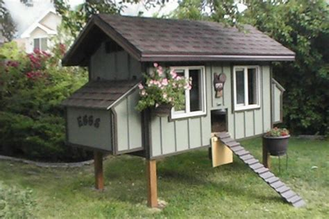 simple chicken house plans daisy chicken coop plan purely poultry