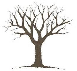 Leafless Tree Branch Outline by 17 Best Images About Printables On Jokes Tree