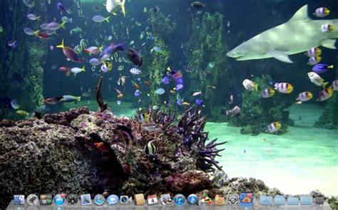 live wallpaper for pc full version imagenes acuarios con movimientos imagui