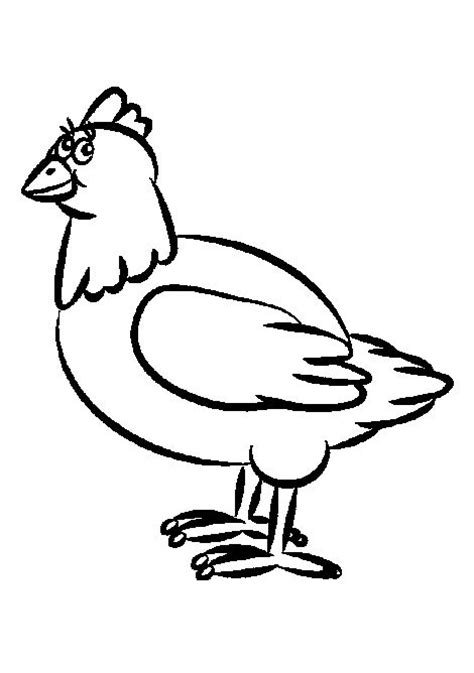 funny chicken coloring page 7 best chicken drawings images on pinterest hens