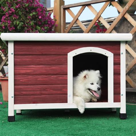 cute dog house cute dog houses time to take your pooch uptown infobarrel