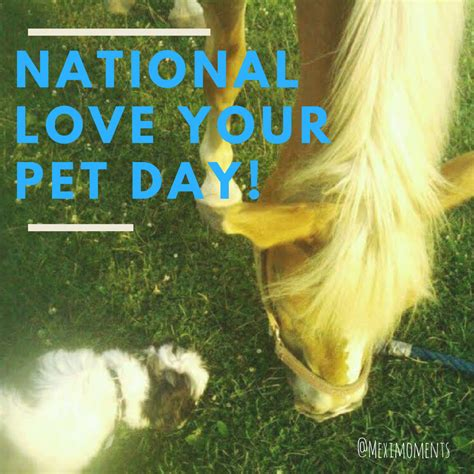 national love  pet day  dog breed