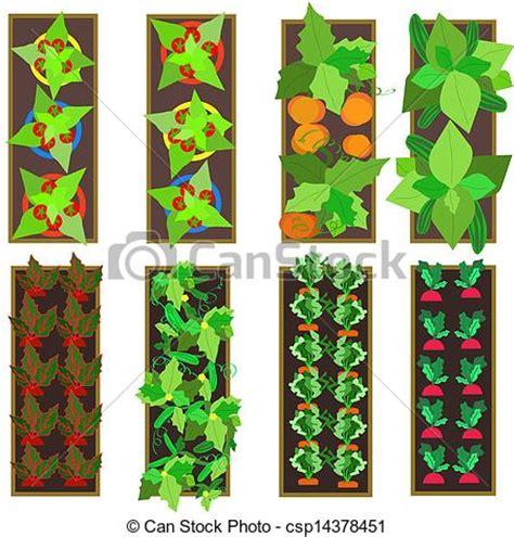 garden layout vector clipart vector of raised gardens illustration of raised