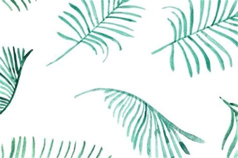 Bando Flower Leaf Blue palm leaf wallpapers wallpapers