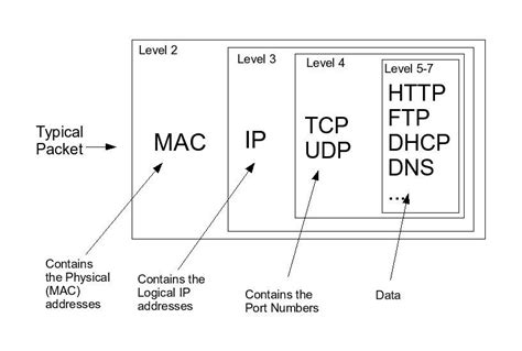 Network Packet Layout | the basics of network packets tournas dimitrios