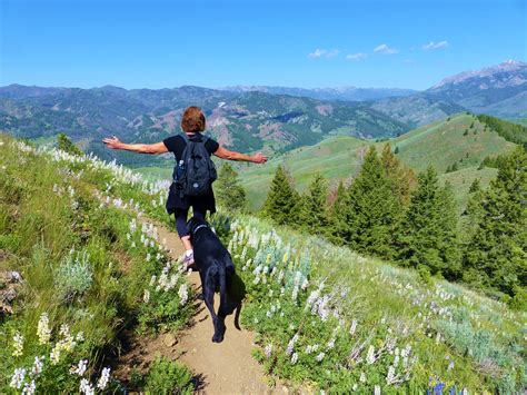friendly hiking trails 10 great friendly hiking trails in sun valley visit idaho
