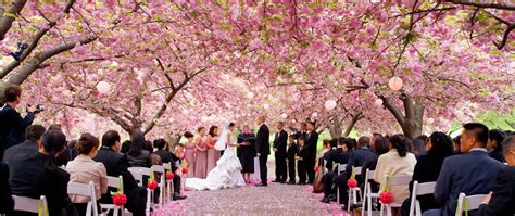 lokasi pre wedding terindah   york panduan wisata