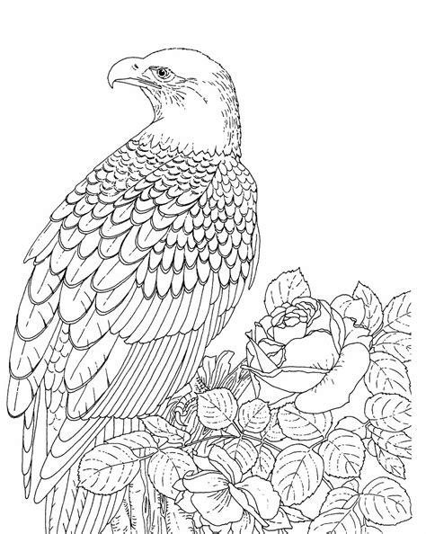 anti stress coloring book national bookstore printable bald eagle coloring pages coloring me