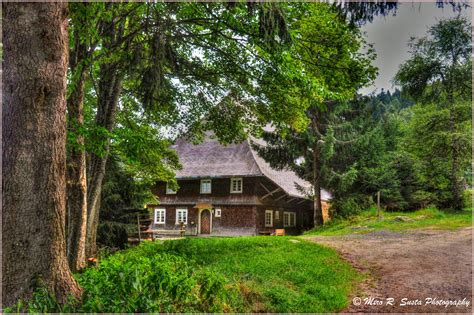 photo collection beautiful small forest house
