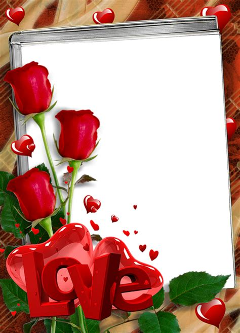 red transparent frame  roses  love gallery