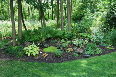 small woodland garden ideas photograph woodland garden m