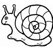 15 Snail Coloring Page  Print Color Craft