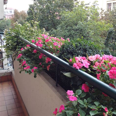 terrazzi fioriti realizzazione terrazzi fioriti a puligreen