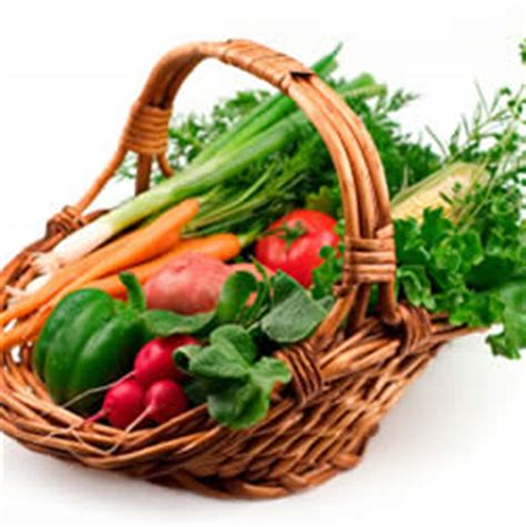 Organic Food Ecology Issue 4 Articles Highlight