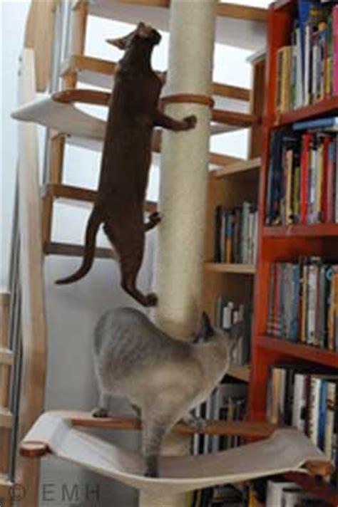 katzengerechte wohnung katzengerechte wohnung kratzbaum fressnapf spielzeug