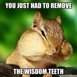 Chipmunk Meme - wisdom teeth chipmunk