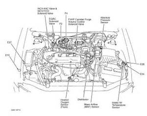 1999 nissan altima engine diagram get free image about wiring diagram
