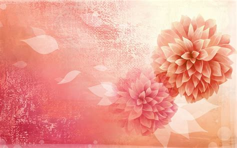 background flowers beautifully illustrated vector flower backgrounds
