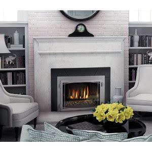 Gas Powered Fireplace by Napoleon Gas Powered Insert Fireplace Catalogue Licensed