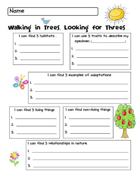 My Nature Walk Worksheet