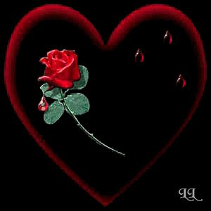 animated roses and hearts red rose heart beating