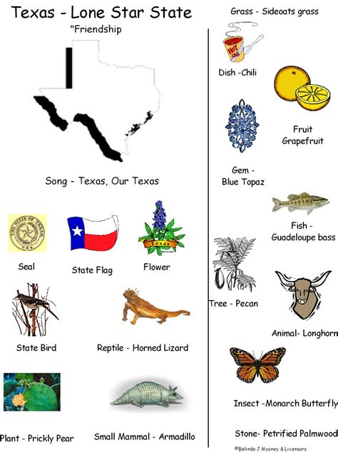 kindergarten themes texas symbols of texas coloring pages