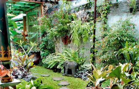 Pagar Taman Hiasan Kebun Isi 5pcs berbagai manfaat tanaman obat keluarga