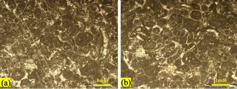 mudstone thin section microfacies and sedimentary environments of the fahliyan