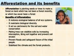 Advantages Of Afforestation Essay afforestation in india