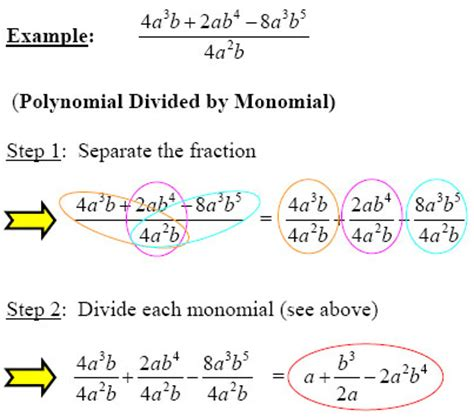 dividing a polynomial by a monomial worksheet resultinfos