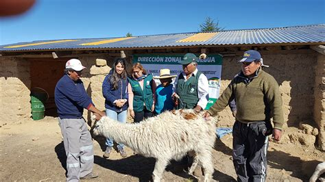 convocatorias agro rural convocatorias agro rural newhairstylesformen2014 com