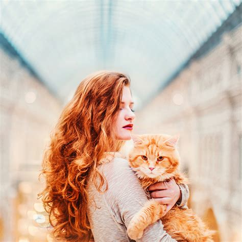 kristina makeeva kotleta cutlet cat