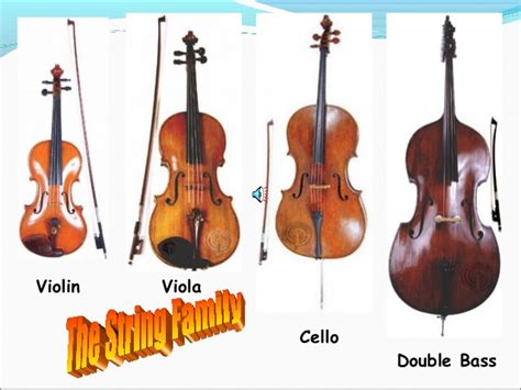 string section instruments instruments of the orchestra