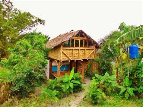 hawaiian bungalow resorts coconut palm invading your room picture of la jungla