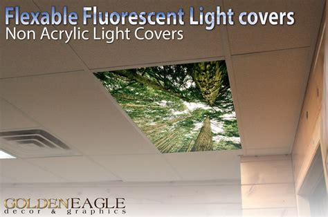 Office Ceiling Light Covers Fluorescent Light Cover Skylight Ceiling Office