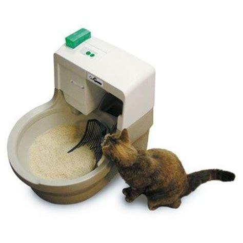 cassetta gatto autopulente la lettiera per il gatto 100caniegatti