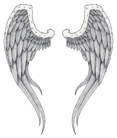 tattoo flash wings image detail for angel wings tattoos high quality photos