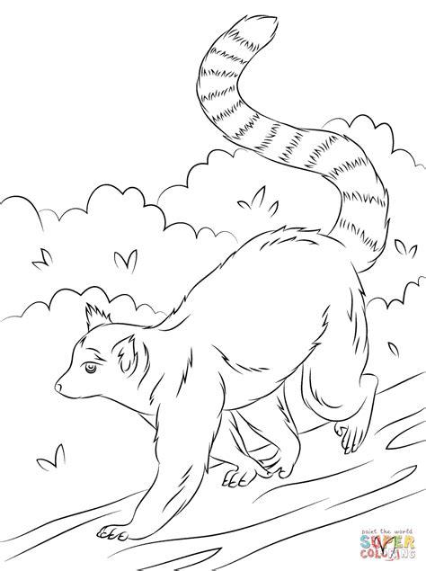 Lemur Printable Coloring Pages Lemur Coloring Page